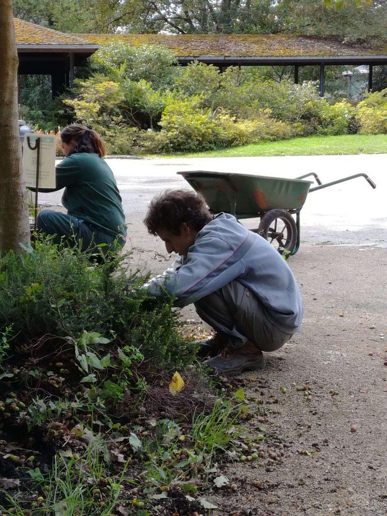 Antonin au parc Floral